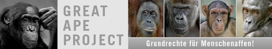 great ape project The great ape project has 90 ratings and 10 reviews angela said: i've rated this anthology low not because i believe apes are not people (i actually bel.